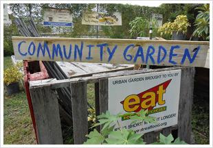 Garden Delights Program Community Garden
